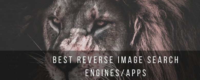 Top 6 best reverse image search engines and apps